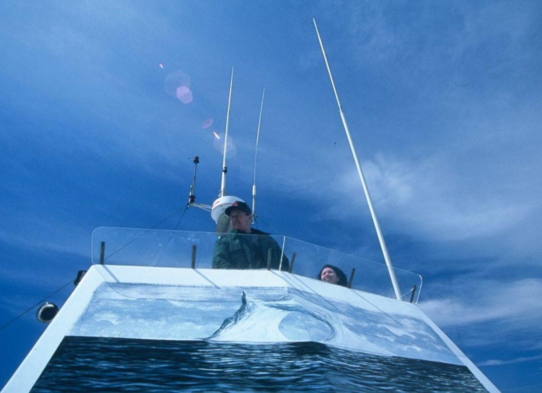 bateau iceberg canada