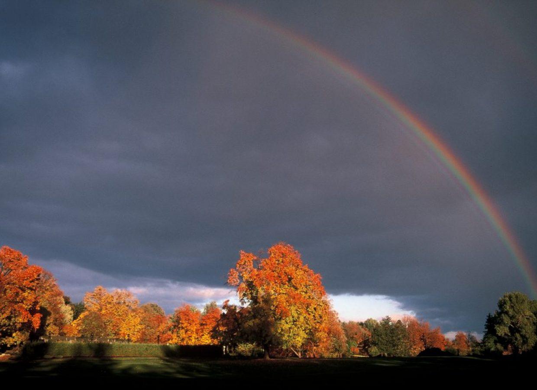 canada automne arc en ciel