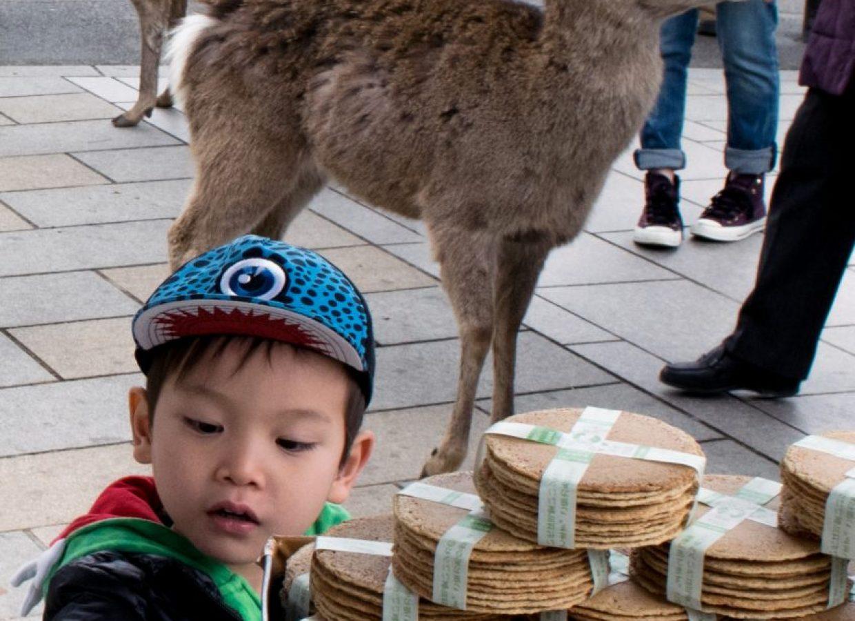 japon enfant
